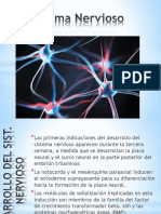 Sistema Nervioso - Embriologìa - UNPRG - 2017 - Dr. Jorge Ortiz