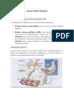 Apostila Adaptação Neural. Hipertrofia e Fadiga