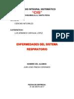 Enfermedades Que Afectan El Sistema Respiratorio Juan Jose