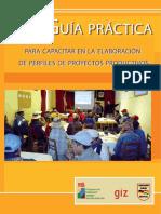 GUIA DE PROYECTOS PRODUCTIVOS.pdf
