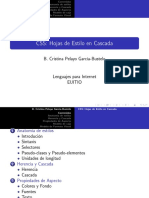 css_transparencias.pdf