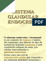 Sistema Glandular Endocrino