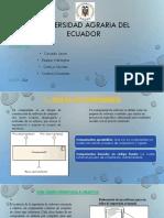 DS. ExpoGrupal2doparcial