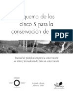 Cinco S.pdf