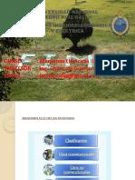 Maquinas electricas II -curso 2016-II - 1° cap