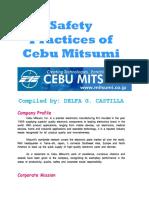 CASTILLA - Safety Practices of Cebu Mitsumi