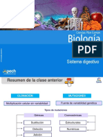 Clase 22 Sistema digestivo.pdf