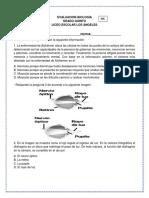 biologia 5