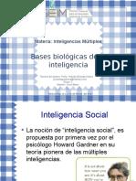 bases biológicas de la inteligencia.pptx