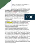 Paper Piro