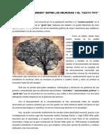 EL_ESLABON_PERDIDO_ENTRE_LAS_NEURONAS_Y.pdf