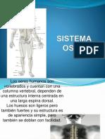 Sistema Oseo Tercero Eso
