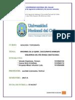INFORME GENERAL DE LA QUEBRADA DE CHUCUMAYO