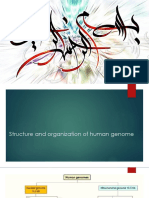Structure and organization of human genome