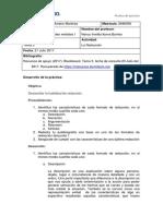 Alejandra Moreno Martinez Matricula 2846036 - Seminario de Habilidades Verbales - Tema 3