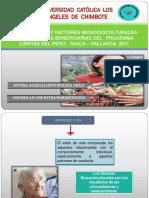 Modelo de diapositivas 01.docx