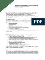 Desarrollo Diseño Ductos Pemex