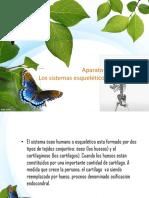 plantilla 4 mariposas