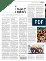 La Increíble Historia Del Calao y Sus Vecinos Del Zoo (1)