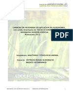 apuntesanatomiayfisiologiaaniaml2012-2.pdf