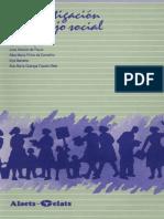Investigacion en Trabajo Social, Netto