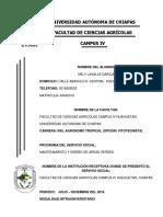 Reporte Servicio Social Robin Etzamir Silvestre Ross j110022