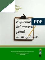 Esquemas Del Proceso Penal Nicaraguense