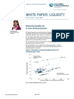 En Measuring Liquidity Risk a Cross Asset Perspective July 2015