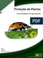 Proteção Plantas