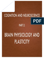 brain physiology and plasticity