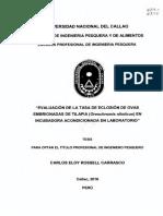 CarlosEloy_Tesis_tituloprofesional_2016.pdf