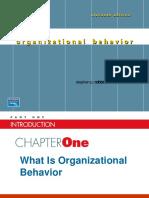 Chapter1 Whatisorganizationalbehaviour 110524132750 Phpapp02 (1)