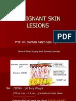 Malignant Skin Lesions