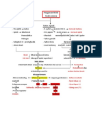 patofisiologi peritonitis.docx