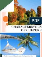 characteristicsofculture-140122010352-phpapp02
