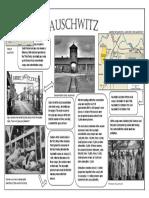 auschwitz pdf