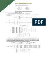 Matrices Soluciones Selectividad