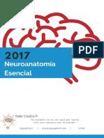 Neuroanatomia Esencial 2017