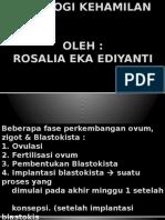 Copy of Fisiologi Kehamilan