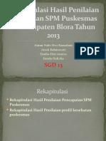 Profil Kesehatan Kabupaten Blora 2013