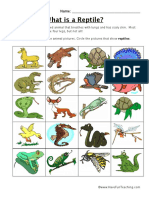 Classifying Reptiles Worksheet