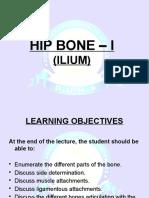 Hip bone