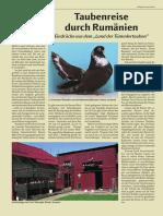 02_Rassen_Arten-Tauben_2008_19.pdf