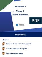 T4 - Àcids Nucleics