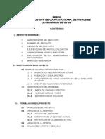 SNIP-ULTIMO_1-IDENTIFICACIÓN Y FORMULACIÓN DEL PROYECTO.doc