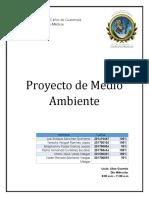 proyecto de ambiente quimicaMA.docx