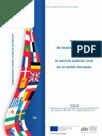 Guía Buenas Practicas de La Pericia Civil Union Europea