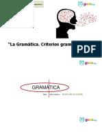 Criterios gramaticales .pdf
