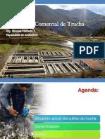 cursoproducciondetrucha-130408235125-phpapp02 (1).pdf