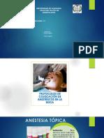 Internado Anestesico Topic
